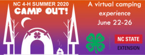 Cover photo for Youth Invited to 4-H Summer Camp Out