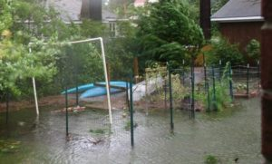Cover photo for Managing the Impact of Floodwater Contaminants on Soil and Produce in Residential, Community, and School Vegetable Gardens