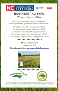 Cover photo for Mid-Season Wheat Q&A Zoom - 3/9/21