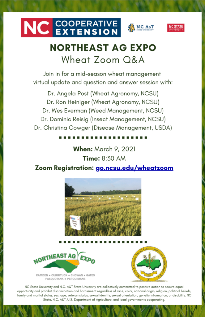 Wheat Zoom Q&A flyer